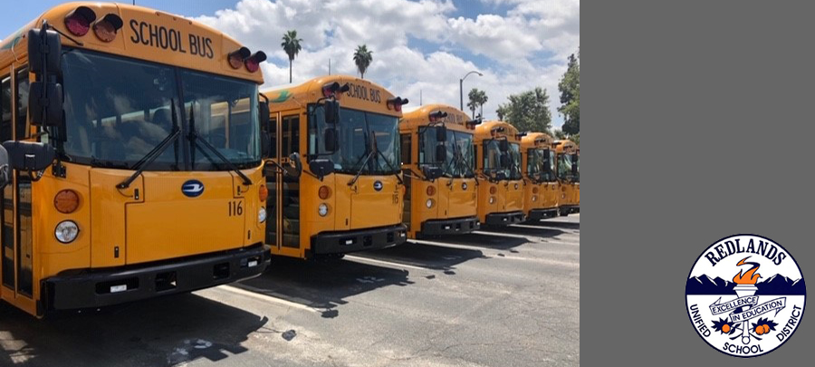 School Buses lined up in a row